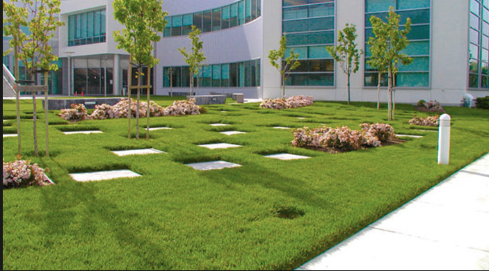 Picture of office building commercial landscaping