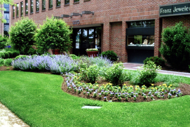 Picture of exterior commercial landscaping