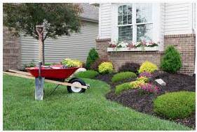 Home landscaping orig